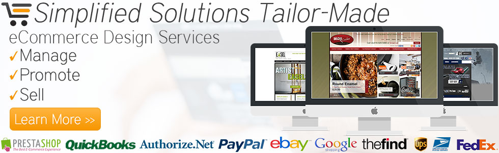 eCommerce Design Services & Web 2.0 Shopping Cart